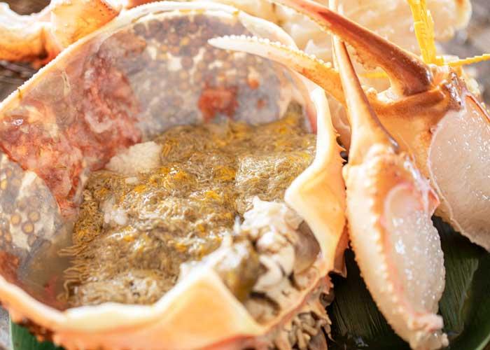 越前蟹料理画像